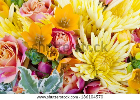 Amazing bunch of flowers close up - stock photo