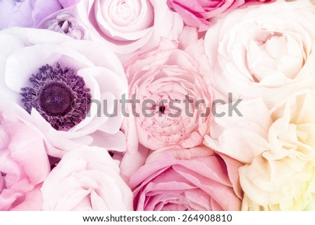 Amazing colorful flower bouquet close up - stock photo