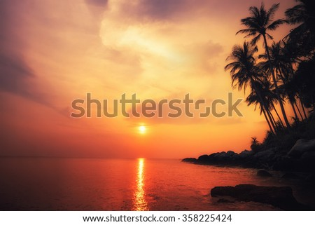 Amazing colors of tropical sunset. Phuket island, Thailand travel landscapes and destinations