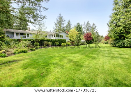 Amazing farm house backyard with green lawn, fir trees, bushes and trimmed hedges