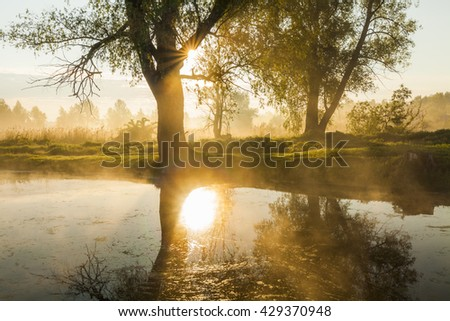 Amazing foggy landscape in the morning sun. - stock photo