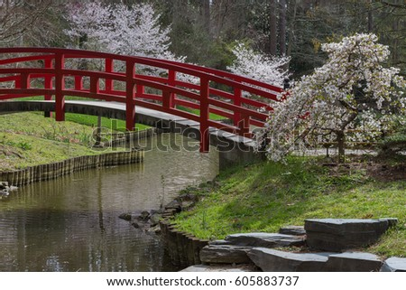 amazing japanese garden scene at duke gardens in durham nc the cherry blossoms are