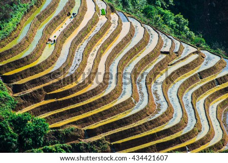 Amazing landscape in Northwest Vietnam. Terraced fields in Ta Xua, Bac Yen, Son La province, Vietnam. At an altitude of 2000m above sea level,Northern Vietnam has many terraces spread over the slopes.