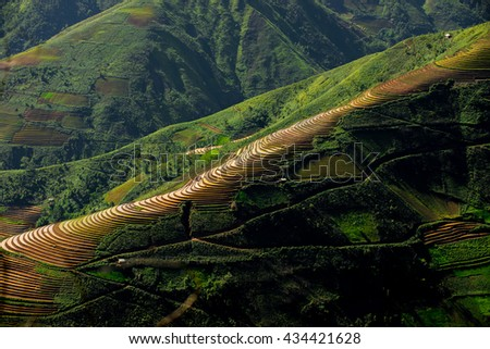 Amazing landscape in Northwest Vietnam. Terraced fields of ethnic minorities people in Vietnam. At an altitude of 2000m above sea level, this this is the cultural particularities of ethnic minorities.
