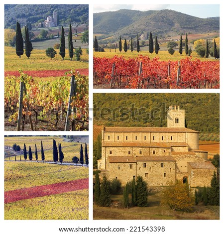 amazing landscape of tuscan vineyards in autumn,  St. Antimo Abbey in Castelnuovo dell'Abate,region of famous red italian wines Brunello and Rosso di Montalcino ,  Italy, Europe - stock photo