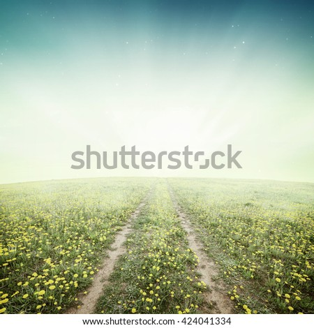 Amazing meadow landscape with fog - stock photo