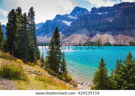 Amazing mountain glacial Bow Lake with emerald water.  The lake is surrounded by coniferous forests. Canadian Rockies, Banff National Park - stock photo
