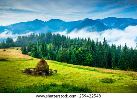 stock-photo-amazing-mountain-landscape-with-fog-and-a-haystack-259422548.jpg