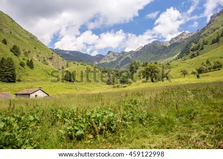 Amazing mountain view in a sunny summer day (Ponte di legno, Valle di Viso - Italy) - Panoramic view