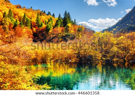 Amazing pond with emerald crystal water among colorful fall woods and mountains at the Rize Valley in Jiuzhaigou nature reserve (Jiuzhai Valley National Park), China. Autumn forest reflected in water.