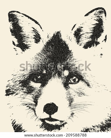 Amazing portrait of a fox, vulpes vulpes. The head of the beautiful forest wild beast. Smart look of a dodgy animal. Great for user pic, icon, label or tattoo. Excellent illustration in grunge style.