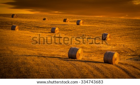 Amazing rural landscape. Sunset and haystacks on a hill.