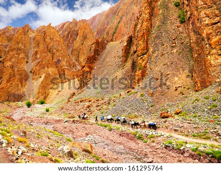 Amazing scenic view - high mountain road with small tibet caravan consisted of horses and mules against the background of rugged rock, Leh area, Ladakh range, Himalaya, Jammu & Kashmir, Northern India - stock photo