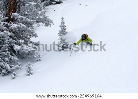 Amazing skier descending through a forest, Utah, USA. - stock photo