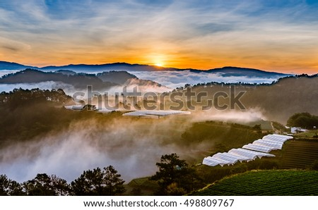 Amazing sunrise in Trai Mat Garden, Da Lat City, Famous View In Da Lat City Da Lat is highland city fog in the morning. Da Lat is one of the beautiful and the famous city in Viet Nam.