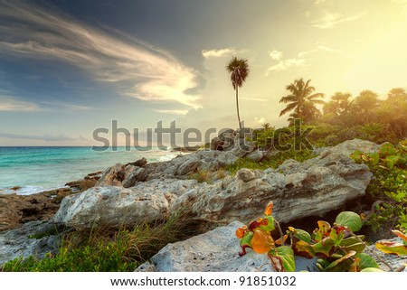 Amazing sunset at the jungle of Caribbean Sea in Mexico - stock photo