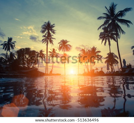 Amazing sunset on sea beach with palm tree.