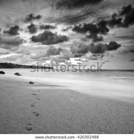 Amazing tropical landscape. Indonesia - Bali. Black-white photo. - stock photo