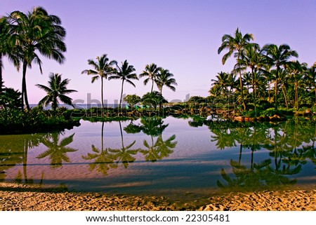 amazing view of coast with palms and reflection Kauai, Hawaii - stock photo