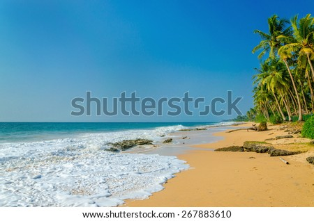 Amazing view of exotic sandy beach with high palm trees on a background of blue sky - stock photo