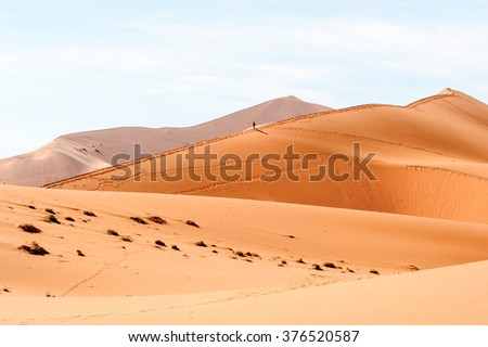 Amazing view of the  Namibia desert, Sossuvlei, Africa.