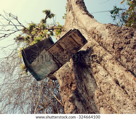 Amazing view with old mailbox hang overhead on large tree trunk in Vietnam forest, funny and danger mail box