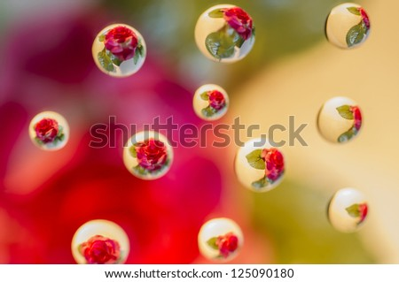 Amazing water drops photo with reflection of a flower - stock photo