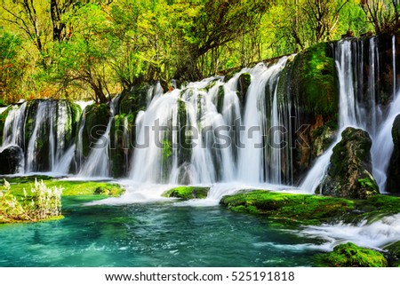 Amazing waterfall and azure lake with crystal clear water among green woods in Jiuzhaigou nature reserve (Jiuzhai Valley National Park) of Sichuan province, China. Beautiful summer forest landscape