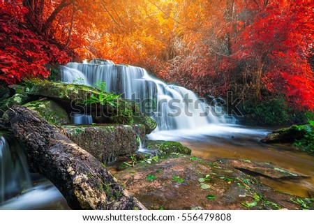 Amazing Waterfall Colorful Autumn Forest Stock Photo ... - photo#14