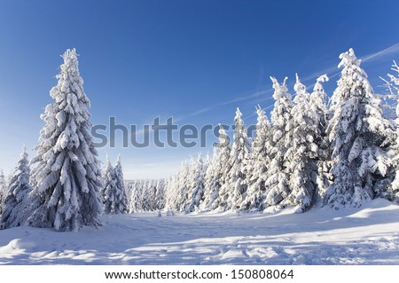 amazing winter landscape with snow and blue sky - stock photo