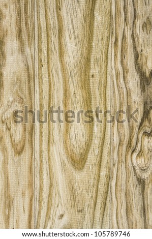 Amazing wood background with great colors and light