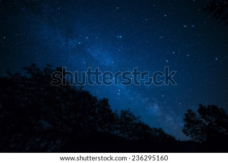 Amazingly peaceful photo of the milky way above silhouetted trees. - stock photo