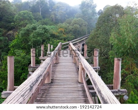 Amazon elevated trail path ecotourism forest, Brazil. - stock photo