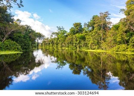 Amazon rain forest perfectly reflected in a small river near Iquitos, Peru - stock photo