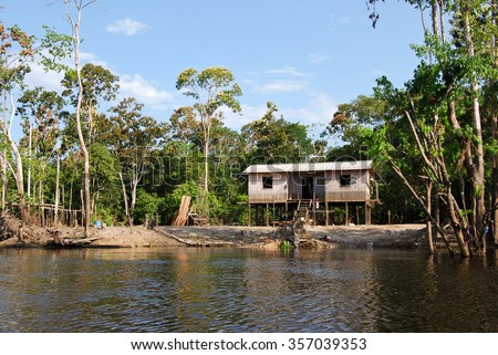 Amazon rainforest: Expedition by boat along the Amazon River near Manaus, Brazil