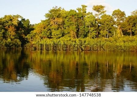 Amazon river in morning  - stock photo