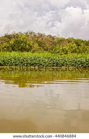 Amazon River In South America Largest River By Discharge Of Water In The World And The Second In Length  - stock photo