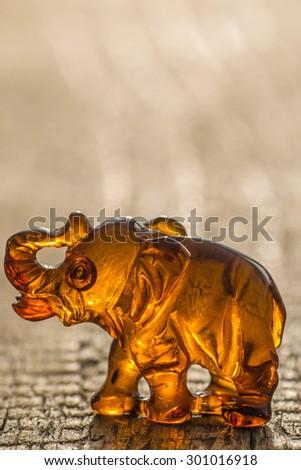 amber, elephant - stock photo