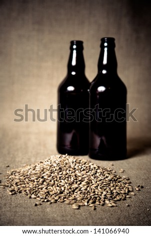 Amber malt, a beer brewing ingredient. - stock photo