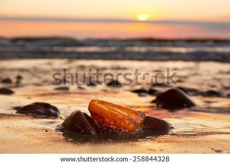 Amber stone on the beach at sunset. Precious gem, treasure concept. Baltic Sea, Poland. - stock photo