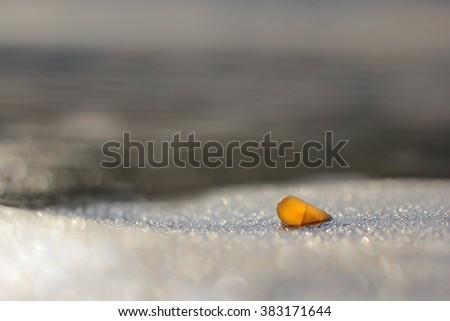 Amber stone on the beach. Precious gem, treasure concept. Baltic Sea, Poland. - stock photo