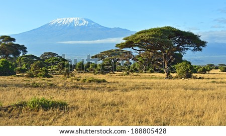 Amboseli National Park and Mount Kilimanjaro in Kenya - stock photo