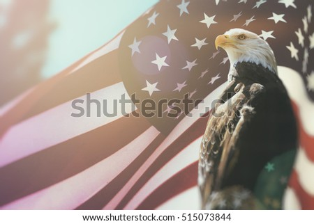 American Bald Eagle Flag Patriotism. Bald Eagle, symbol of American freedom, perched in front of an American flag. United States of America patriotic symbols.