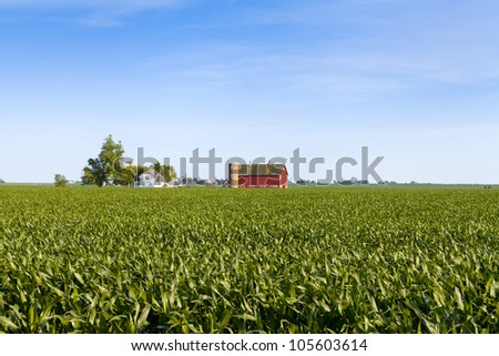 American Country Farm With Blue Sky - stock photo