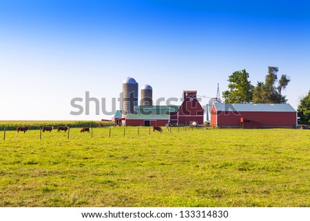 American Countryside With Cows and Farm - stock photo