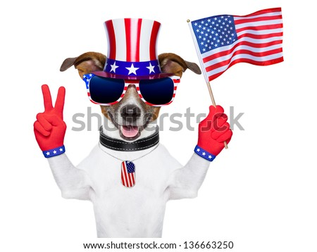 american dog with peace  fingers waving american flag - stock photo