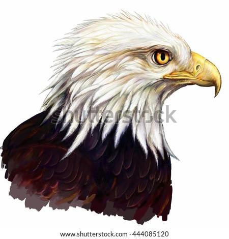 G Logo Eagle Hawk Icon Design Stock Vector 531327247 - Shutterstock