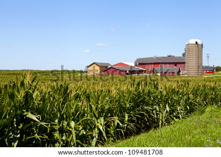 American Farm - stock photo