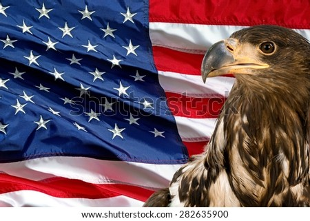 American Flag, Flag, Backgrounds.