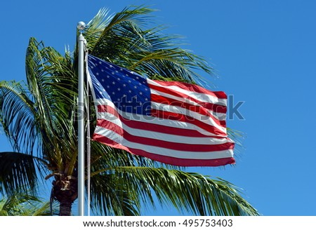American Flag on a flagpole blowing in the breeze against a green palm tree and blue sky.